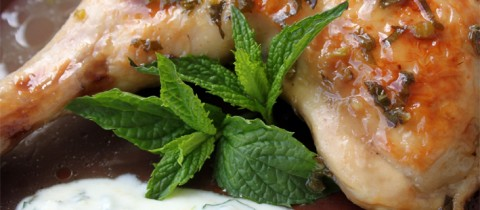 Mint roasted chicken with yogurt sauce